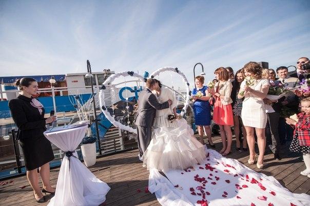 Фото свадьбы трегубенко и эллы